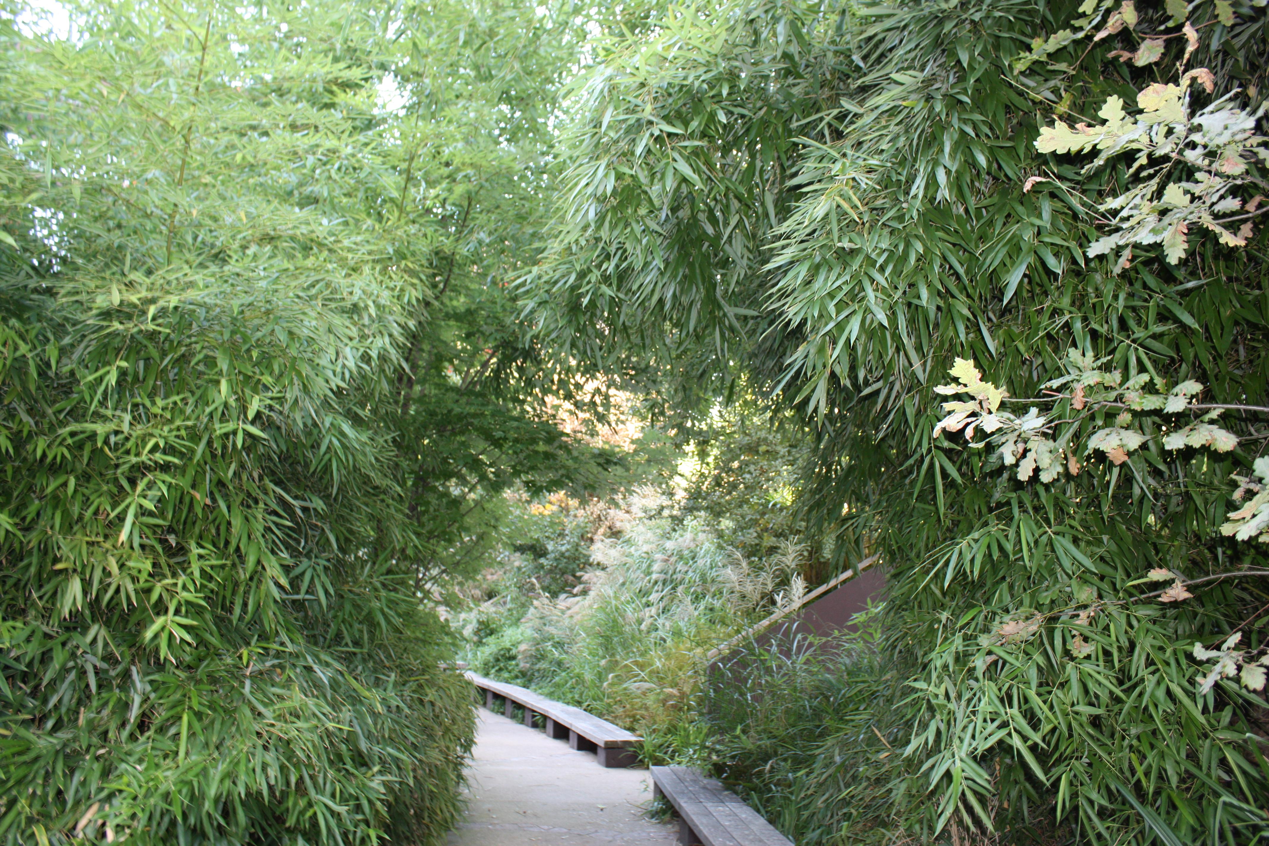 Le jardin du Quai Branly vous invite à une promenade ...