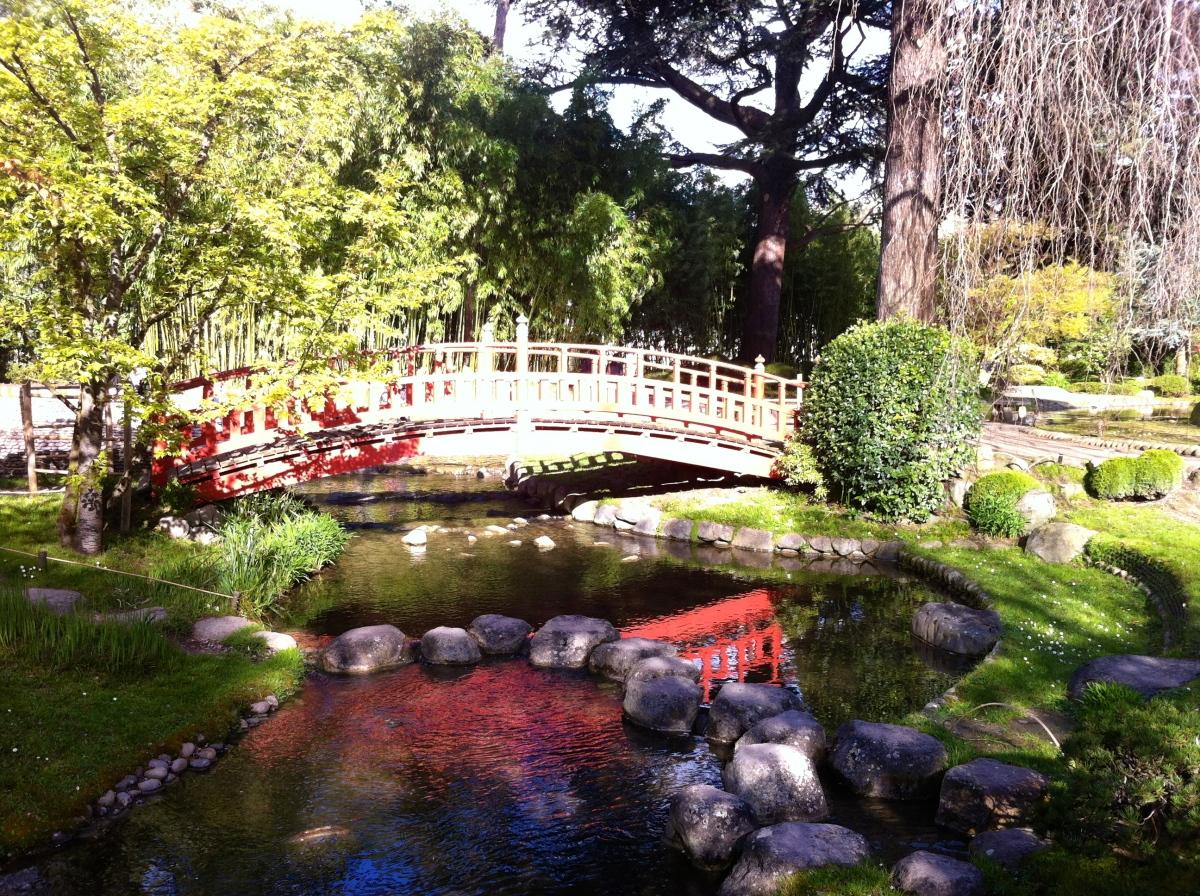 Le jardin albert kahn un voyage v g tal autour du monde - Les jardins albert kahn ...