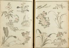Katsushika Hokusai, Manga