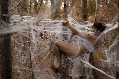 Emergence Arachnéenne, Julien Salaud
