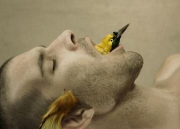 Julien Salaud, Autoportrait en Chanteur du Paradis