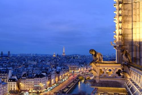 Vue des tours de Notre-Dame - © Michel Eisenlohr