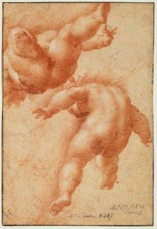 Parmigianino, Études de deux putti, volant, de dos, vus en raccourci, et esquisse d'un troisième (verso de la Sainte Famille), sanguine, 18,6 x 12,1 cm., Paris, musée du Louvre. © RMN-Grand Palais - M. Urtado