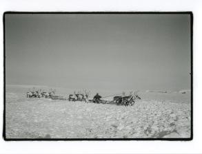 © Nicolas Mingasson / Observatoire Photographique des Pôles