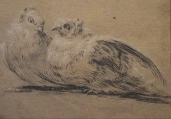 Michel Dorigny, Étude de deux colombes pour La Toilette de Vénus, vers 1658-1660, pierre noire et rehauts de blancs sur papier beige, H. : 16,1 cm. ; L. : 22,4 cm., Paris, musée du Louvre.