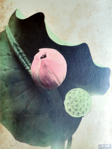 kazumasa ogawa 1860 1929 f52 lotus preuve l albumine sur papier 1877 1882 inv ap11815. Black Bedroom Furniture Sets. Home Design Ideas