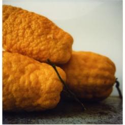 Cy Twombly, Lemons, Gaète, 1998, Impression à sec sur carton, 43,1 x 27,9, Collection Fondazione Nicola del Roscio © Fondazione Nicola Del Roscio, courtesy Archives Nicola Del Roscio